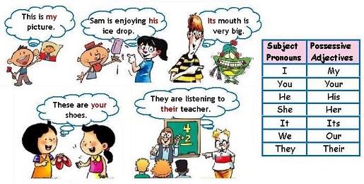 Притяжательные местоимения  в английском с примерами