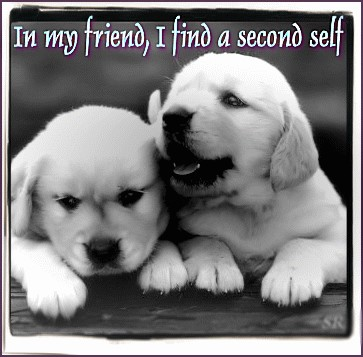In my friend, I find a second self
