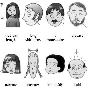 Описание внешности