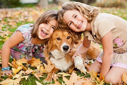 Две девочки и рыжая собака на природе