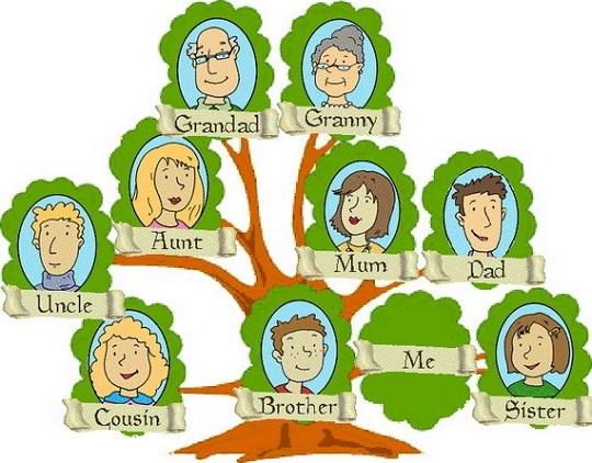 Семейное древо