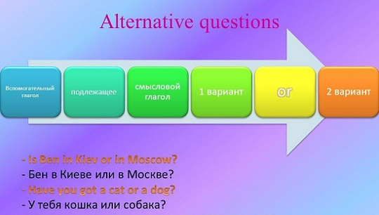Alternative questions